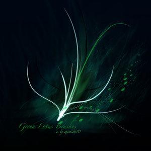 Кисти зеленый лотос