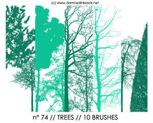 Кисти силуэты деревьев